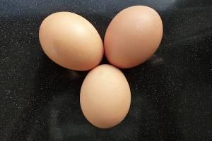 eggs_counter
