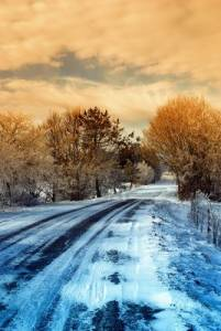 10431783-road