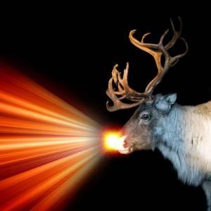 deer1l