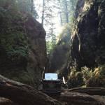 amwriting Oregon nature typophile literature books