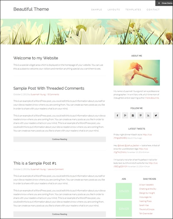 beautiful-pro-theme-author websites wordpress