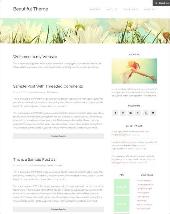 beautiful-pro-theme-author websites wordpress
