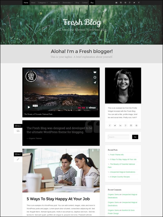 fresh-blog-author websites wordpress