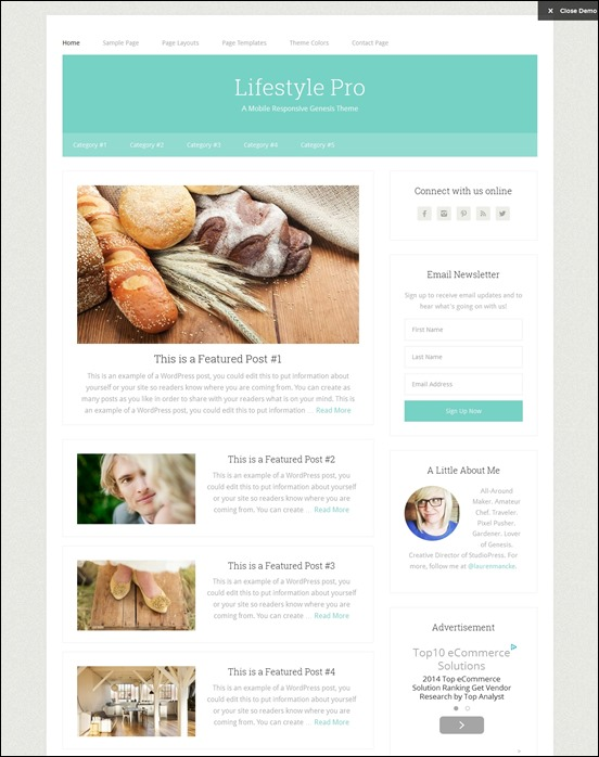 lifestyle-pro-author websites wordpress