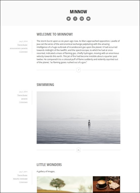 minnow-_thumb2_thumbauthor websites wordpress