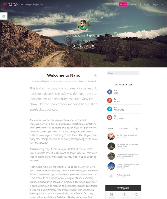 nanoauthor websites wordpress