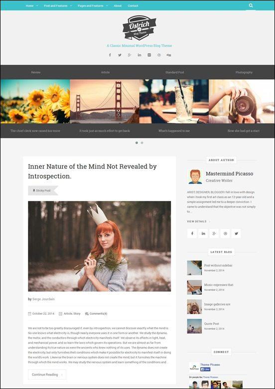 ostrich-author websites wordpress