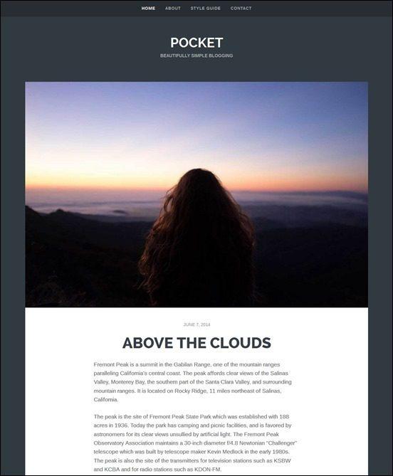 pocket-_thumb2_thumbauthor websites wordpress