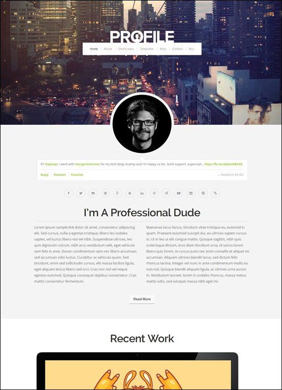profile-author websites wordpress