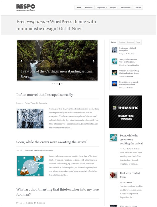 respo-[3]author websites wordpress