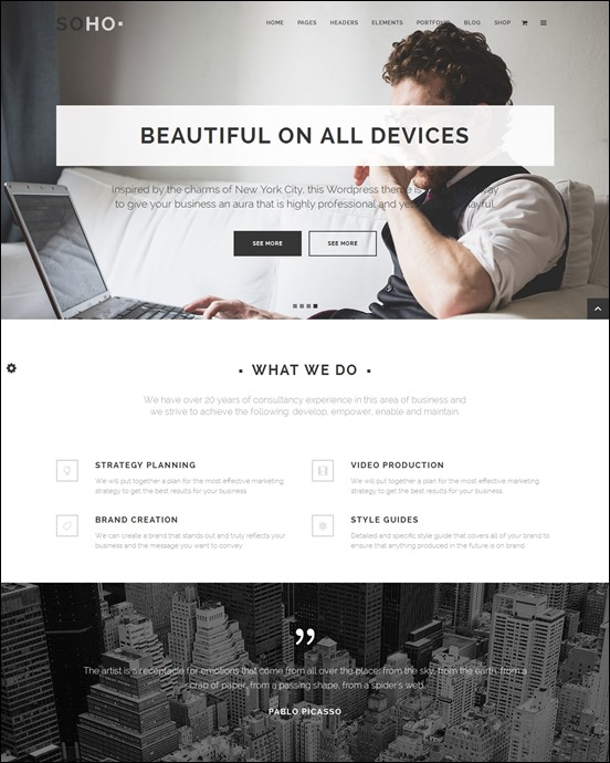 soho-author websites wordpress