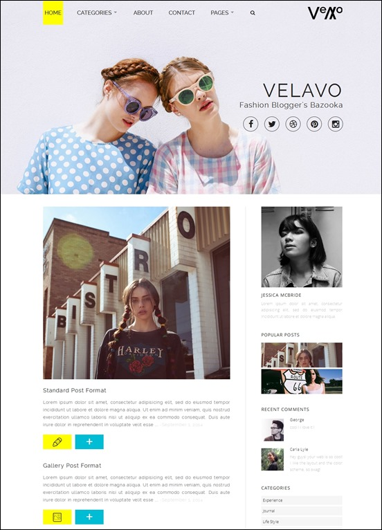 velavo-author websites wordpress